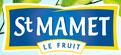 logo St mamet