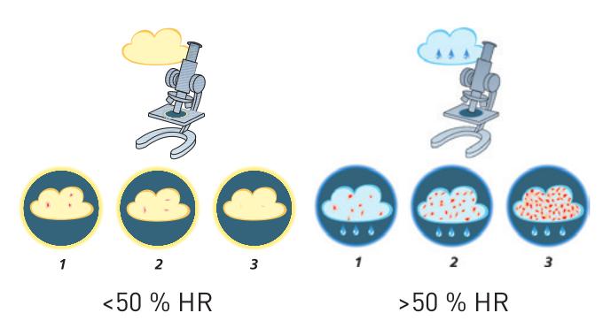 Schéma bactéries et déshumidification