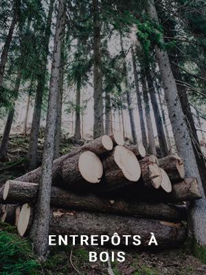 déshumidification stockage bois